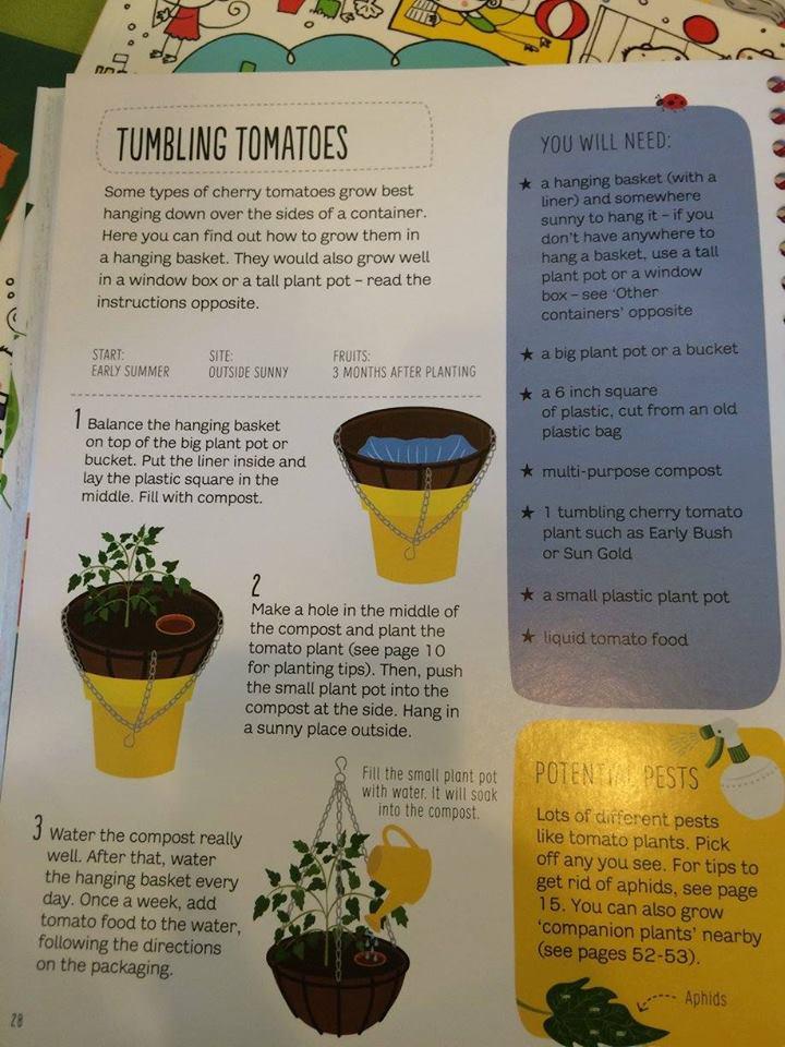 Gardening for Beginners5